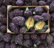 Food background. Green and purple Italian Artichokes Stock Photography