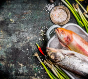 Food background for healthy or diet cooking recipes with fresh fishes and spices ingredients, top view Stock Photo