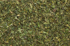 Food background herbal tea dried nettle leaves Royalty Free Stock Photography