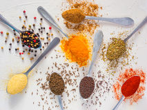 Food background indian spices on white Stock Image
