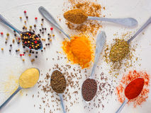 Food background indian spices on white Stock Photos