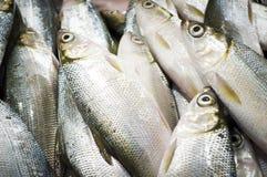 Food background, milk fish in market Stock Photo