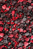 Food background,mixed frozen berries fruits Stock Image