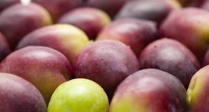 Food background of raw olives. Food background of fresh raw olives Royalty Free Stock Photo