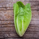 Food background and salad concept with fresh cos lettuce flat la. Y on shabby wooden background stock images