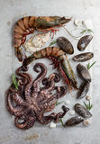 Food background with seafood. Selective focus Stock Photography