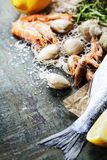 Food background with Seafood and Wine Royalty Free Stock Images