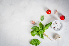 Food background with spices Royalty Free Stock Images