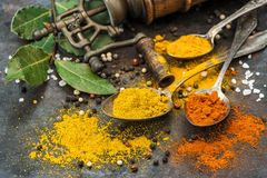 Food background Spices vintage mill Curry turmeric red chili pep Royalty Free Stock Photo