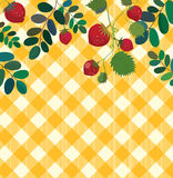 Food background with strawberry and plaid pattern Royalty Free Stock Images