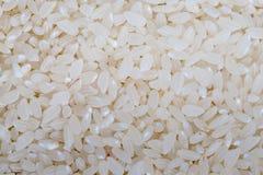 Food background of white round rice Royalty Free Stock Image