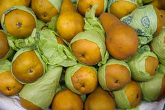 Food background - yellow Bosc pears also known as Kaiser pears. Pile of golden Bosc pears at the Farmer`s market, wrapped in protective green paper for easy Royalty Free Stock Photography