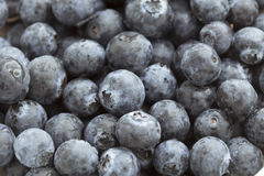 Food Backgrounds: Juicy Blueberries Royalty Free Stock Photos