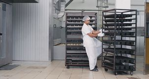 Food bakery engineer and his assistance load the shelves from the industrial oven , they wearing special equipment white. Uniform , big manufacturing stock video footage
