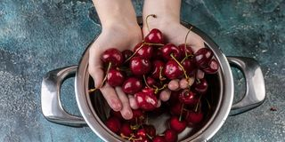 Food banner. Children`s hands hold ripe sweet cherry. Sweet cherry in a pan on a blue concrete background stock image