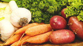 Food banner with fresh vegetables Stock Images
