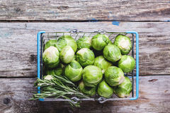 Food basket of brussels sprouts. Top view on food basket of brussels sprouts and rosemary on old wooden table. See series Royalty Free Stock Photos