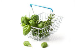 Food basket of herbs Royalty Free Stock Image