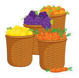 Food baskets vector illustration