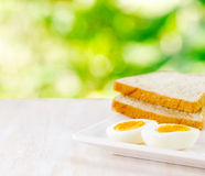 Boiled eggs, toasts and glass of milk Royalty Free Stock Photo