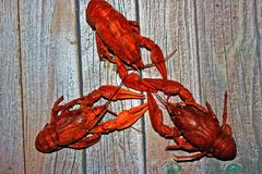 Food, cancers, cancer, snack, beer, for beer, fish. Buy photo with crayfish food royalty free stock images