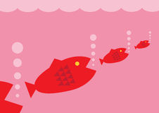 Food Chain. A vector illustration of bigger fish eating progressivly smaller fish. A metaphor on the business food chain Stock Images