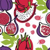 Food collection Fresh dragon fruits, raspberries and figs Seamless pattern. Set Stock Images