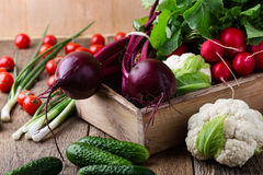 Food composition of fresh organic vegetables variety Stock Image