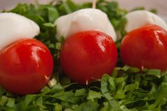 Appetizer with three skewers with mozzarella and tomatoes stock photography