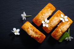 Food concept mini French almond cake financier on black slate st. One with copy space royalty free stock photo