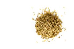 Food Concept Organic Spices Fennel seeds isolated on white background royalty free stock image