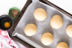 Food concept Proving, Proofing yeast dough of hamburger buns in bake pan before baking royalty free stock photo
