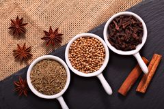 Food concept various Spices Cumin seeds, coriander seeds, cloves, cinnamon sticks and star anise on black slate stone and sackclot Stock Photography