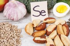 Food containing selenium, vitamins and dietary fiber, healthy nutrition concept. Food containing selenium, vitamins and dietary fiber, natural sources of Stock Photos