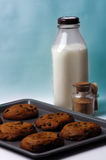 Food - Cookies and Milk. A tray of fresh warm cookies with a bottle of milk and some cinnnamon sugar Royalty Free Stock Images