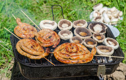 Food cooking on barbecue Royalty Free Stock Photos