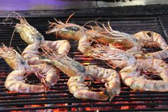 Barbecued Seafood. Food cooking on a barbecue in the Hau Hin night market, Thailand Royalty Free Stock Images