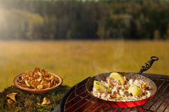 Food cooking on a barbeque Royalty Free Stock Images