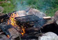 Food cooking on a campfire Stock Photos