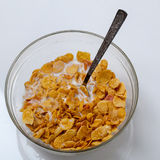 Food. Corn flakes cereal in milk royalty free stock photo