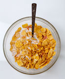 Food. Corn flakes cereal in milk stock image