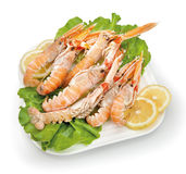Food cousine composition ingredient for eating. Fish composition scampi and prawns on plate with lemon and salad Stock Photography