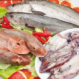 Food cousine fish composition with hot peppers. Fish composition, gurnard and calamari with hot peppers and salad Royalty Free Stock Image