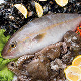 Food cousine fish composition, ingredient for eating Royalty Free Stock Photography