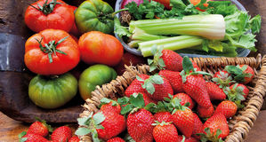 Food cousine vegetables and fruit composition, ingredient for eating. Composition of vegetable and fruit, strawberry fennel and tomatoes for salad Royalty Free Stock Photos