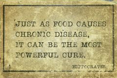 Food cure Hippocrates. Just as food causes chronic disease, it can be the most powerful cure - famous ancient Greek physician Hippocrates quote printed on grunge royalty free stock image