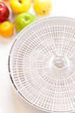 Food Dehydrator Royalty Free Stock Image