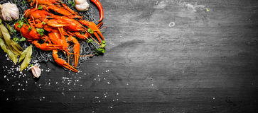The food delicacies. Fresh boiled crawfish with spices and herbs. On a black chalkboard Royalty Free Stock Photography