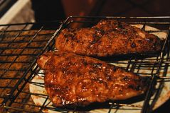 FOOD- Delicious Chicken Breasts Straight From The Grill stock images