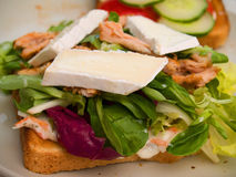 Food - Delicious chicken and camembert sandwich Royalty Free Stock Photos